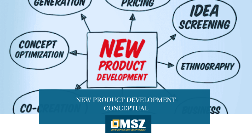 New product development conceptual