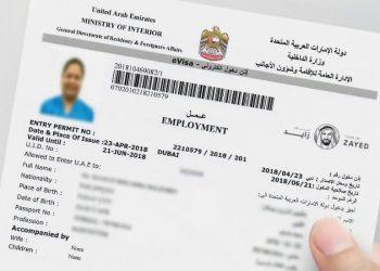 Employement-visa-960x550